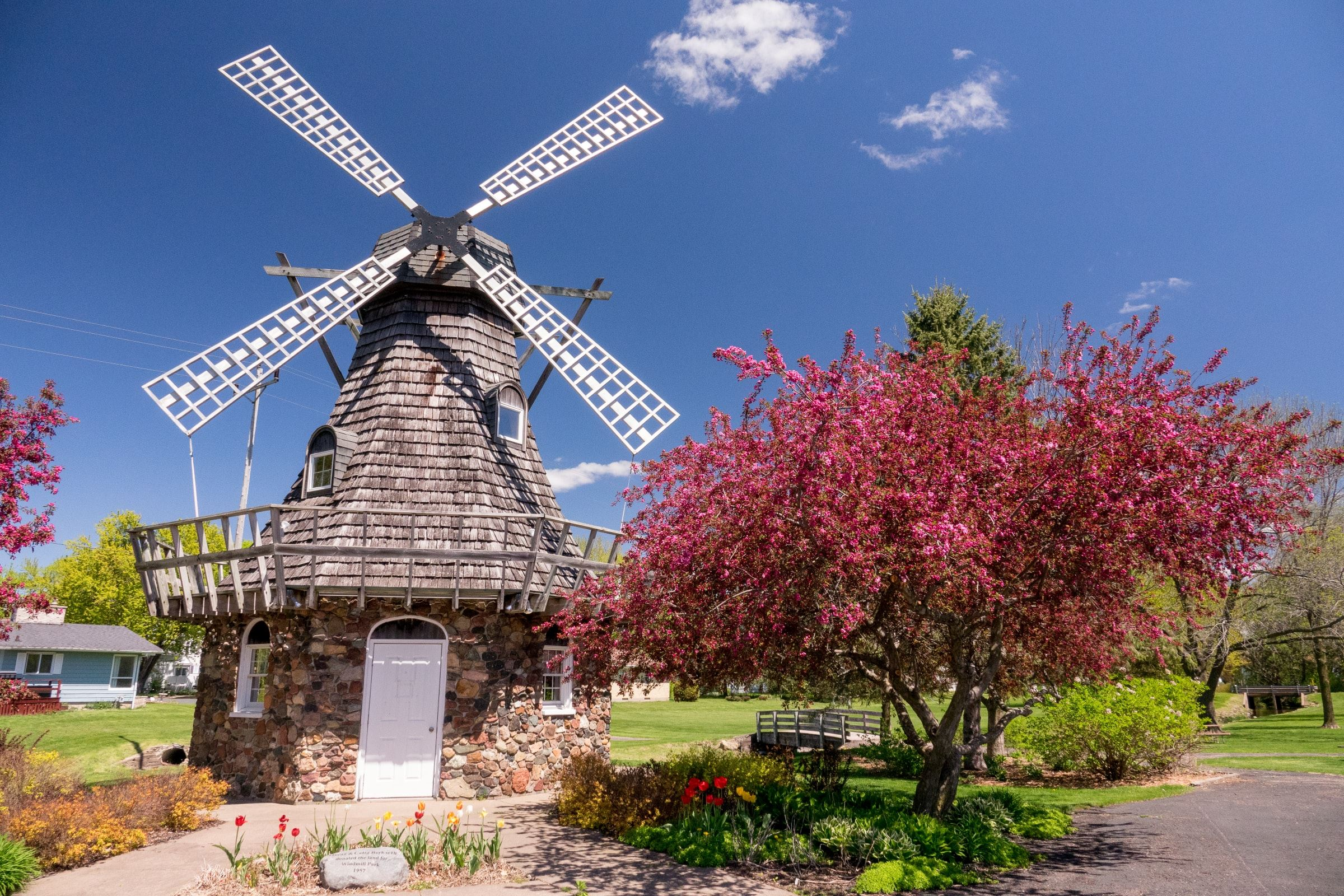 Baldwin Windmill Park with Blossoming Tree