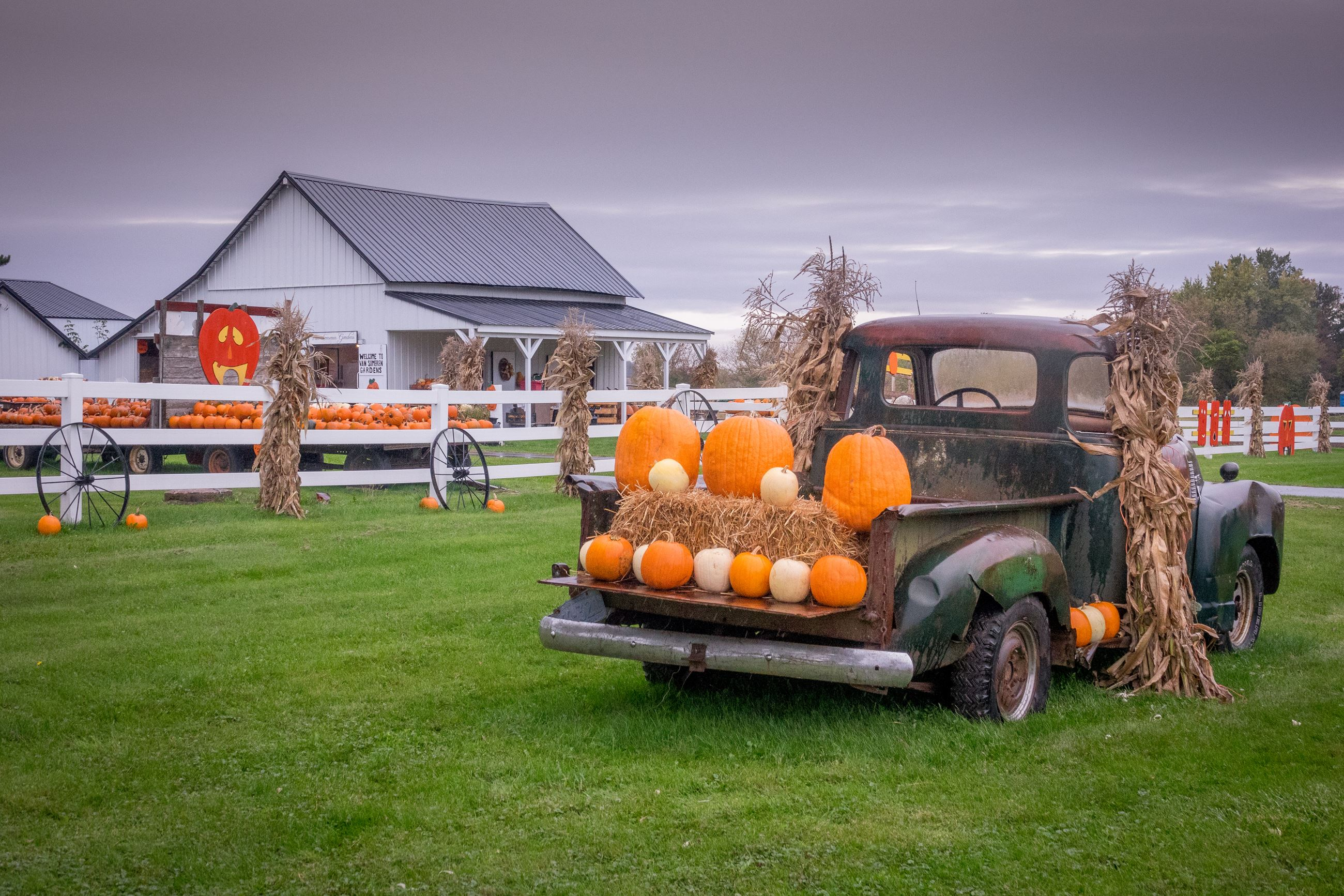 Pumpkins and Hay Bales in Back of Old Truck